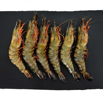 Black Tiger Shrimps Head-On Shell-On U15