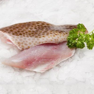 Grouper Fillet - Skin On Boneless